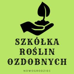 Szkółka Roślin Ozdobnych Nowogrodziec